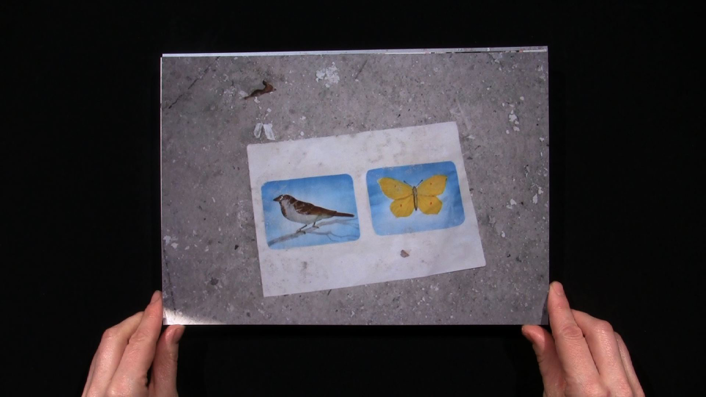 Lina Selander at the Venice Biennale