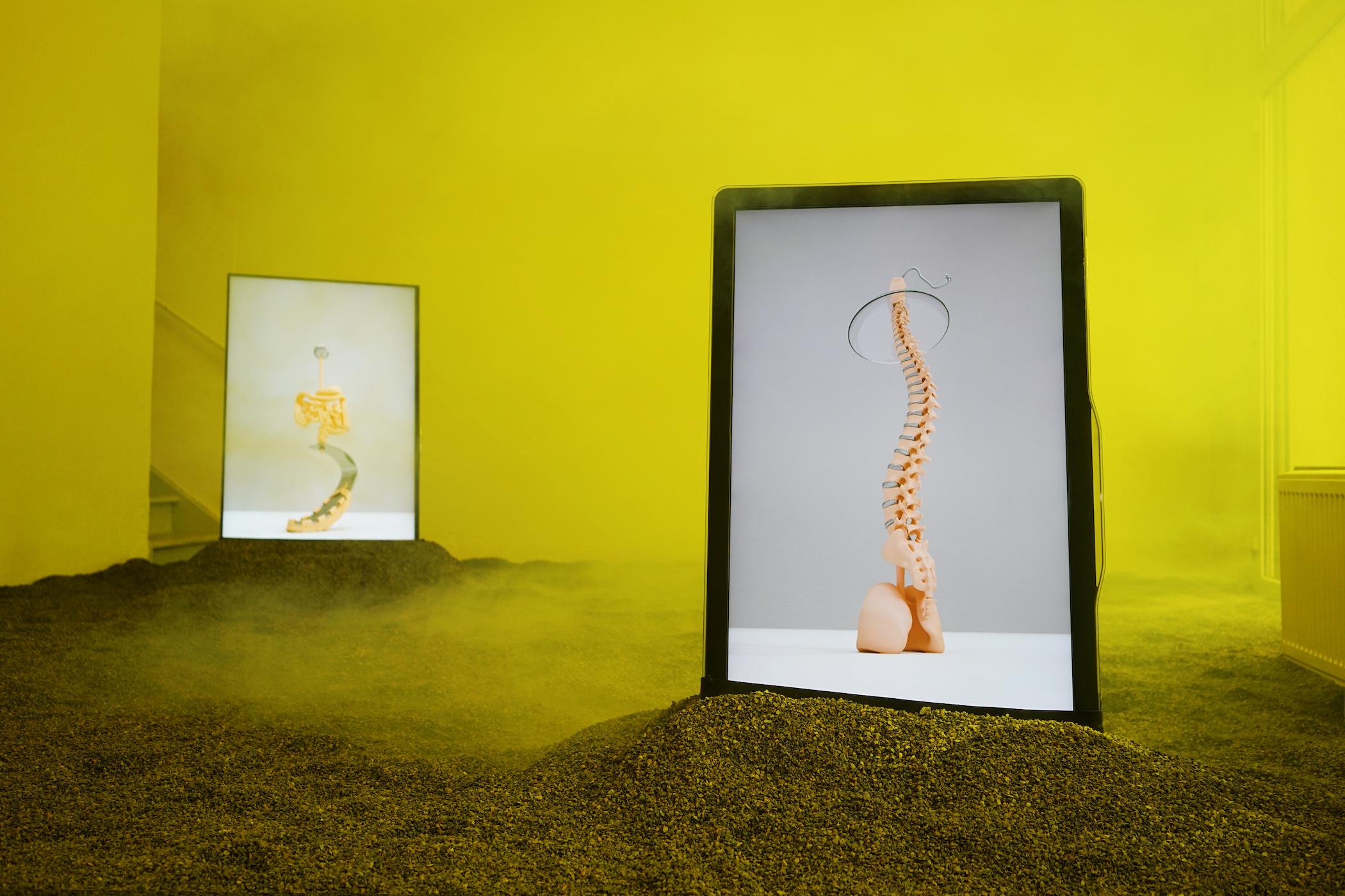 Pierres Et Tradition Apt extemporary art - kunstkritikk